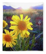 Sunsets And Sunflowers In Buena Vista Fleece Blanket