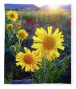 Sunsets And Sunflowers Of Buena Vista 2 Fleece Blanket
