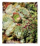 Super Succulents Fleece Blanket
