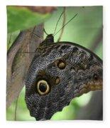 Superb Markings On An Owl Butterfly In A Garden Fleece Blanket