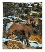 Surverying The Jasper Landscape Fleece Blanket