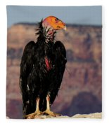 Surveying The Canyon Fleece Blanket