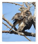 Swainson Hawk Fleece Blanket