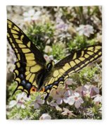 Swallowtail At Sand Wash Fleece Blanket