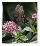 Swallowtail Buterfly Fleece Blanket