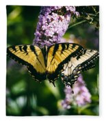 Swallowtail Butterfly At The Maryland Zoo Fleece Blanket