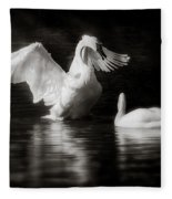 Swan Display Fleece Blanket