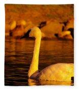 Swan Near Sundown Fleece Blanket