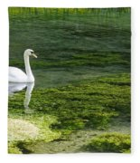 Swan On The River Lathkill Fleece Blanket