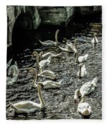 Swans On The Canal Fleece Blanket