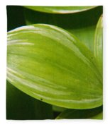 Sweeping Green Fleece Blanket