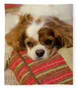 Sweet Dog Face Fleece Blanket