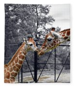 Sweet Moment Fleece Blanket