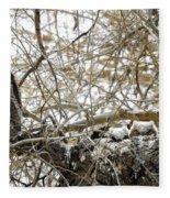 Sweet Owlets Fleece Blanket