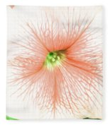 Sweet Peachy Petunia Fleece Blanket