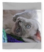Sweet Sabrina Fleece Blanket