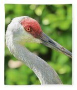 Sweet Sandhill Profile Fleece Blanket