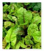 Swiss Chard In A Vegetable Garden 4 Fleece Blanket