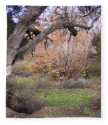Sycamore Grove Fall Fleece Blanket