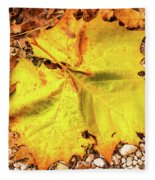 Sycamore Leaf  In Fall Fleece Blanket