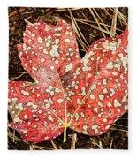 sycamore maple Autumn leaf Fleece Blanket