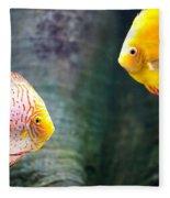Symphysodon Discus Fishes Fleece Blanket