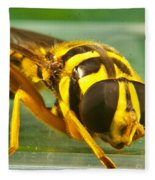 Syrphid Eye To Eye Fleece Blanket
