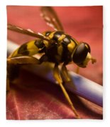 Syrphid Fly Poised Fleece Blanket
