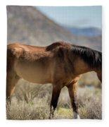 Take  A Walk On The Wildside  Fleece Blanket