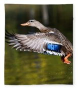 Take-off - Santa Cruz, California Fleece Blanket