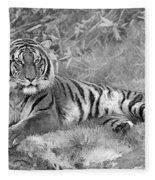 Takin It Easy Tiger Black And White Fleece Blanket