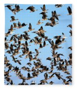 Taking Flight 2 Fleece Blanket