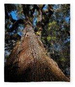 Tall Oak Fleece Blanket