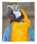 Tanganyika 0087 Fleece Blanket