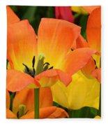 Tantalizing Tulips Fleece Blanket