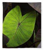 Taro Hoomaluhia 2 Fleece Blanket