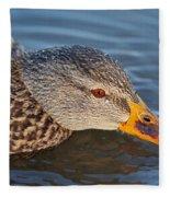 Taster Fleece Blanket