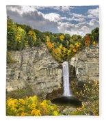 Taughannock Falls Autumn Fleece Blanket