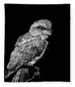Tawny Frogmouth In Black And White Fleece Blanket