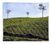 Tea Planation In Kerala - India Fleece Blanket