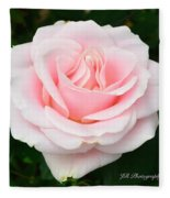 Tea Rose In Pink Fleece Blanket