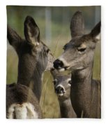 Teach Your Children Well Fleece Blanket