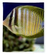 Technicolor Fish Fleece Blanket