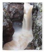 Temperance River State Park Four Fleece Blanket