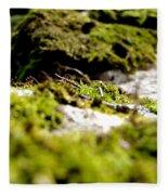 Tennesee Moss Fleece Blanket