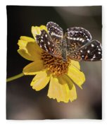 Texan Crescent Butterfly On Marigold-img_1348-2016 Fleece Blanket