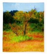 Texas Landscape 102310 Fleece Blanket