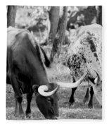 Texas Longhorn Steer In Black And White Fleece Blanket