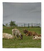 Texas Longhorns And Wildflowers Fleece Blanket