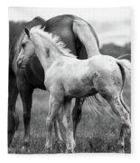 Texas Ranch  Fleece Blanket